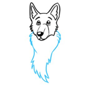How to Draw a German Shepherd Face Step 5