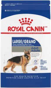 Royal Canin Large Breed Adult Dry Dog Food
